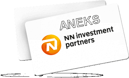 nn investment partners1